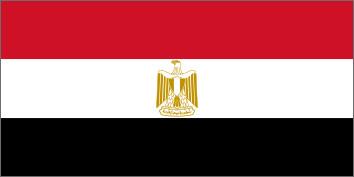 NeuroCheck in Ägypten