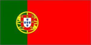 NeuroCheck - Flag of Portugal