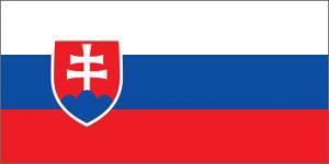 NeuroCheck - Flag of Slovakia