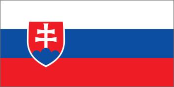 NeuroCheck in der Slowakei