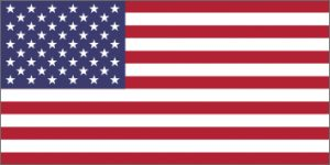 NeuroCheck - Flag of the United States